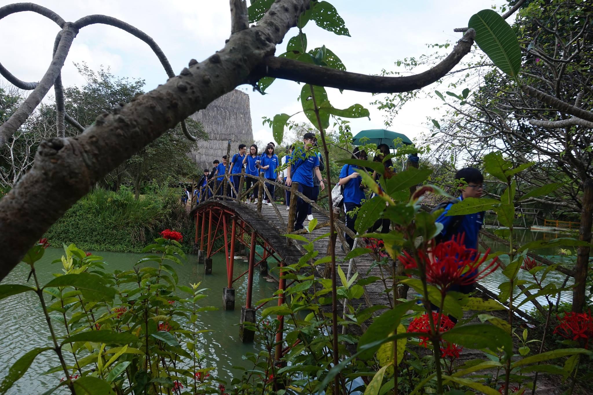Cây cầu khỉ ở làng sinh thái Fosaco