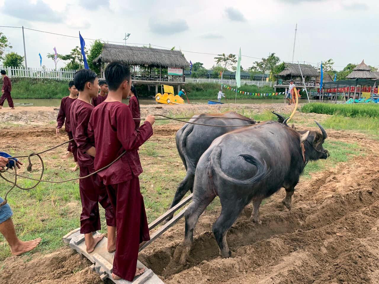 Du khách hóa thân thành người nông dân